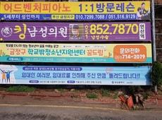 금정구 꿈드림 고정 현수막 게시